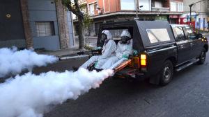 Myggbekämpning i Uruguay för att förhindra att zikaviruset sprids.