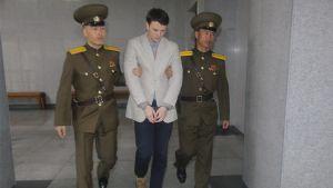 Otto Warmbier greps i januari 2016