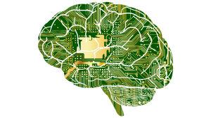 Kuvituskuva: aivot ja mikropiirilevy.