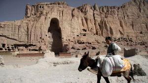 En afghansk pojke som rider på en åsna passerar Bamiyan där en av de enorma Buddha-statyerna stod innan de förstördes 2001.