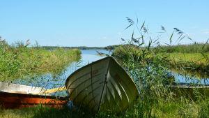 Båt vid Hinjärv träsk.