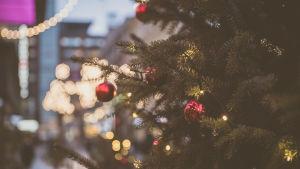 Joulukuusi kadulla