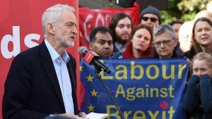 Jeremy Corbyn talar den 23 februari 2019.