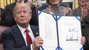 President Donald Trump undertecknade i januari 2018 en lag om att hundra införseln av opioider till USA.