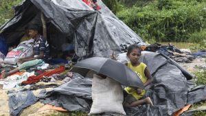 Över 430 000 rohingyer har flytt till Bangladesh sedan den 25 augusti.