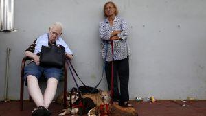 Ett äldre par som har evakuerats från sitt hem i Puerto Rico.