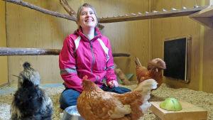 Kvinna sittandes i en hönsgård med två hönor och en tupp.