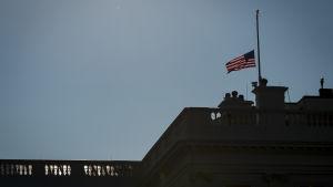 Flagga på halvstång på grund av John McCains död