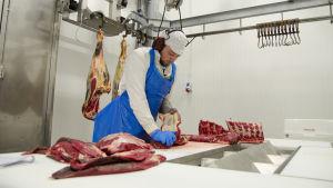 Axel Ahlvik styckar en ko. Kons bakdel hänger på en krok i taket. På bordet framför Axel ligger bitar av kött.