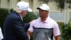 Donald Trump och Tiger Woods träffades och fastnade på bild 2014.