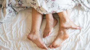 Naisen ja miehen jalkaterät pilkistävät peiton alta.