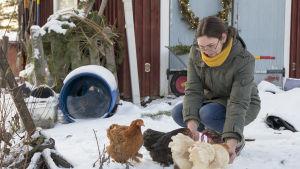 En kvinna böjer sig ner och matar tre hönor. Det är vinter och snö på marken.