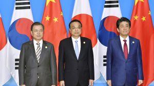 På bilden står Sydkoreas president  Moon Jae-in, Kinas premiärminster Li Keqiang och Japans premiärminister Shinzo Abe på rad.
