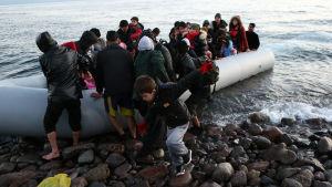 Minst ett 1000-tal flyktingar har sedan söndagen försökt nå grekiska öar i Egeiska havet.