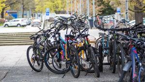 Polkupyöriä Sampolan edessä keväällä 2020.