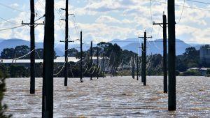 Elstolpar som sticker upp ur vattnet i ett översvämmat område i Windsor i Australien