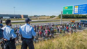 Flyktingar som försöker ta sig från Danmark vidare till Sverige.