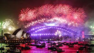 Vy över hamnen i Sydney, med en bro i mitten och operahuset till vänster, med röda fyrverkerier som lyser upp himlen.