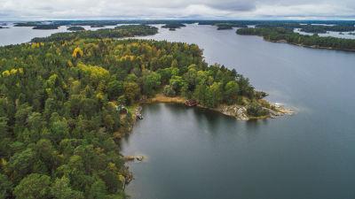 En flygbild av Tovö i Ekenäs skärgård, massor av skog och vatten.