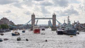 Små och väldigt stora fiskebåtar på Themsen i centrala London 2016, med Tower Bridge i bakgrunden.