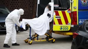 Ambulanspersonal i skyddsutrustning lyfter in en kvinna på bår i ambulans i Victoria, Australien.