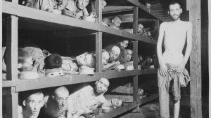 Utmärglade fångar vid koncentrationslägret Buchenwald