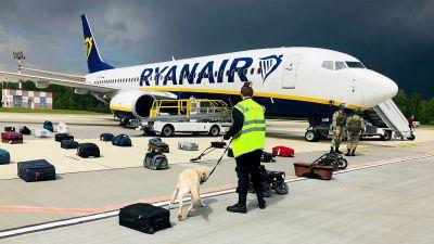 Ryanairs plan, kappsäckar på marken utanför planet på marken och en hund som luktar på dem.