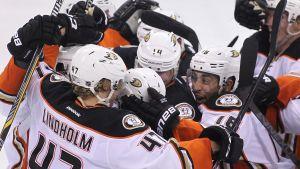 Anaheim Ducks firar mål.