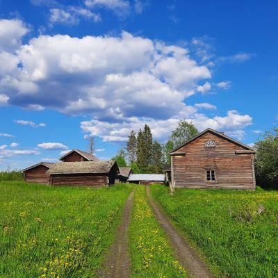 Vanha Pyhäniemen tila Mäntyharjulla