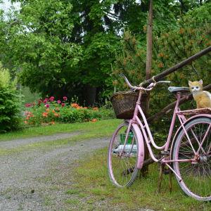 Trädgård invid Kustrutten