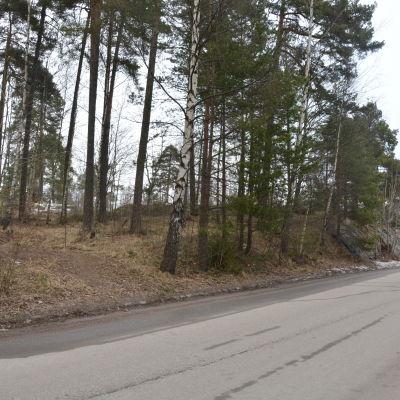 Högbergsgatan går förbi tomten där det skulle kunna byggas ett stadshus i Karis.