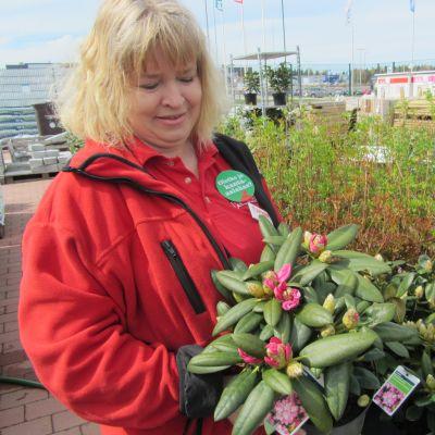 Trädgårdsmästare Carita Bergholm-Kinnunen på Plantagen.