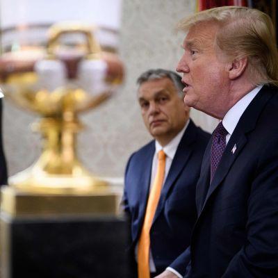 Donald Trump och Ungerns premiärminister Viktor Orbán i Vita huset.