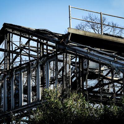 Brand i aphus i Krefeld, Tyskland
