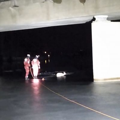 Kaksi pelastajaa ja kauris, joka erottuu valkeana hahmona salamalla otetussa kuvassa.