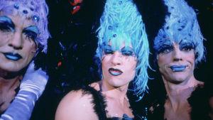 Terence Stamp, Guy Pearce ja Hugo Weaving elokuvassa Priscilla, aavikon kuningatar