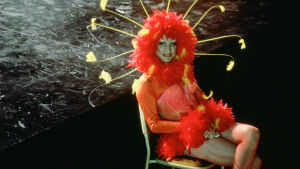 Terence Stamp istuu drag queen -asussa. Kuva elokuvasta Priscilla, aavikon kuningatar.