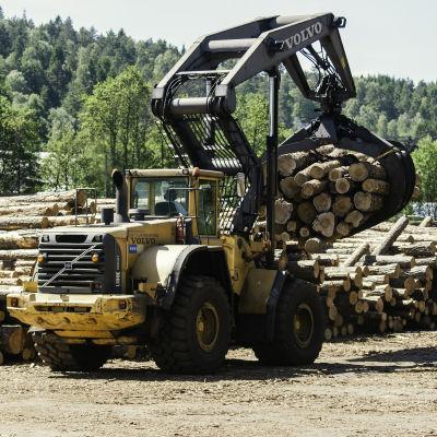 En skogsmaskin flyttar stockar till en stor hög.