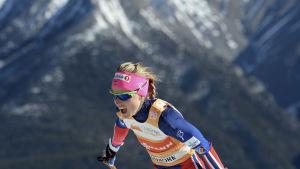 Therese Johaug skidar på hög höjd.