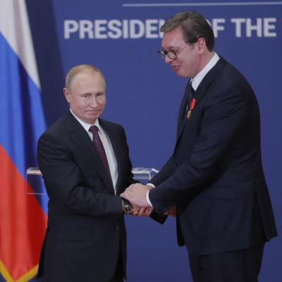 Presidenterna Putin och Vucic skakar hand.