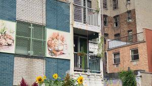 Hus byggt av fraktcontainers i Brooklyn, New York.