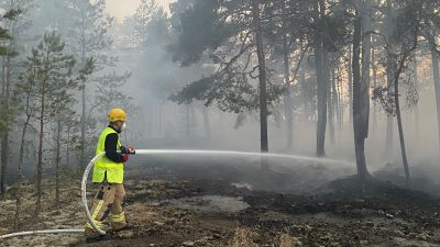 Brandsläckning i skogen