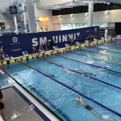 Uimareita Kuopion uimahallissa valmistautumassa SM-kisoihin