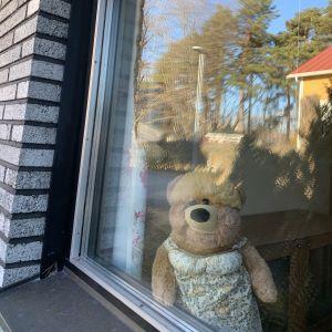 Två nallar i ett fönster i Vikinga i Vasa.