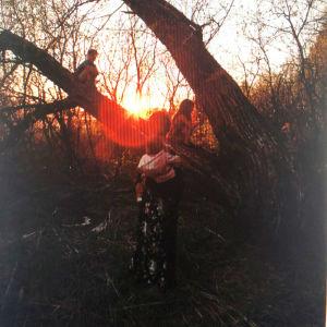 Suuri puu ilta-auringossa. Vastavalossa näkyy tummina hahmoina kaksi puussa kiipeilevää lasta ja puun edessä nainen pieni lapsi sylissään.