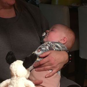 Bild på sex månader gamla Lova.