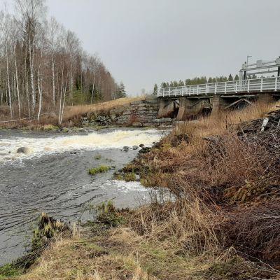 Björkfors i Esse å.