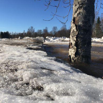 Kyrönjoki tulvii Isossakyrössä 31.3.2021