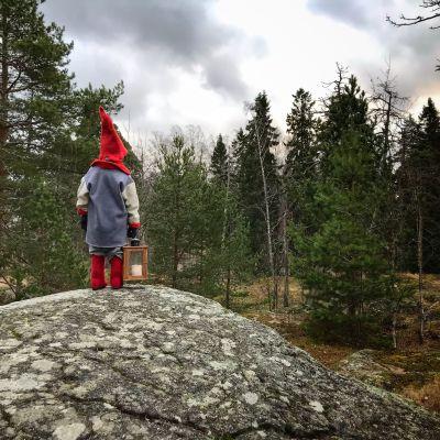 Tonttu seisoo kiven päällä selkä kameraan ja katselee metsään.