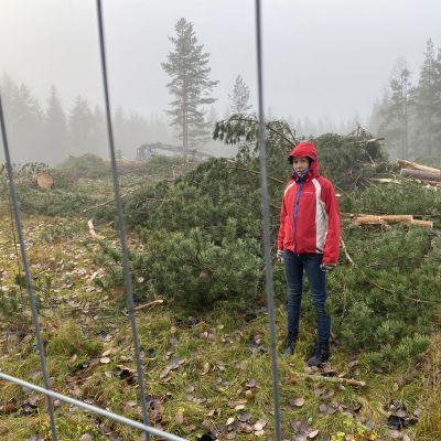 Kvinna i röd jacka står bakom ett stängsel framför en hög med fällda träd.